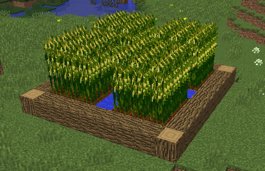 Simply-Corn-Minecraft-Mod
