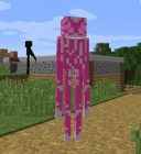 Enderman Evolution Minecraft Mod