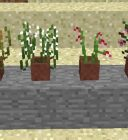plants Minecraft Mod